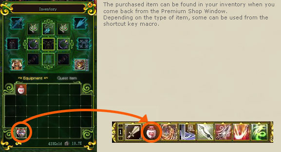 The purchased item can be found in your inventory when you come back from the Premium Shop Window. Depending on the type of item, some can be used from the shortcut key macro.